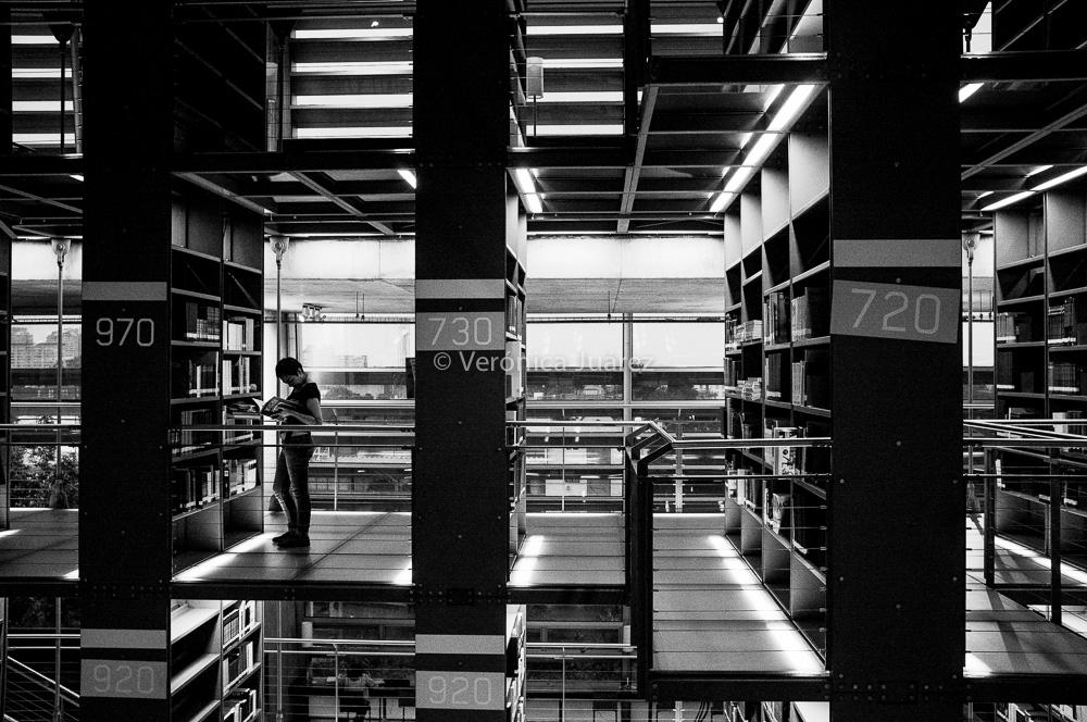 Fotos Biblioteca Vasconcelos