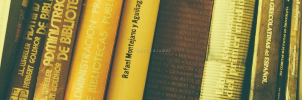 biblioteconomia shelf