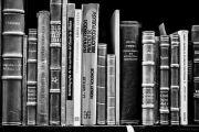 dia nacional bibliotecario-2
