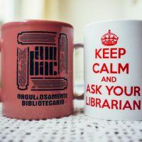 dia bibliotecario-2