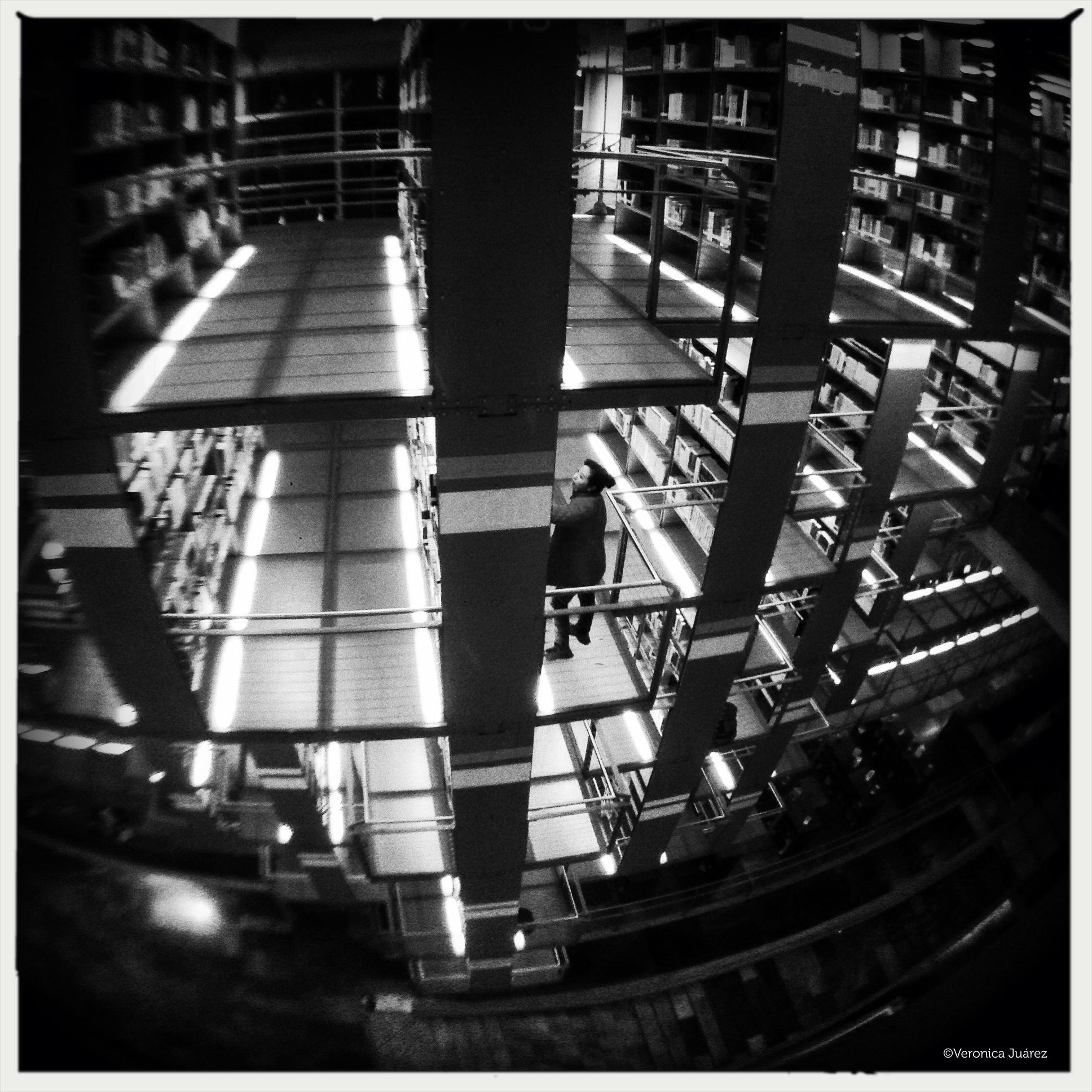 amor y biblioteca