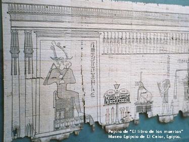 Glosario Bibliotecológico: Papiro