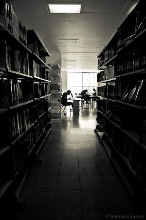 """Mitos sobre la lectura y los """"distractores"""""""