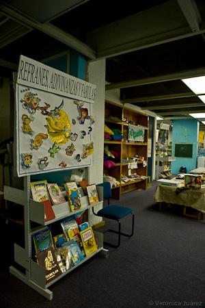 Biblioteca Infantil Ma. Enriqueta Camarillo de Pereyra, Estación Temática