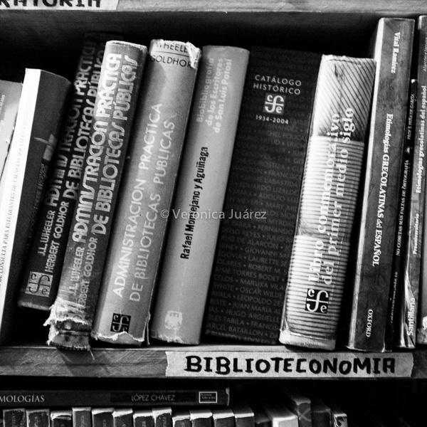 El ciclo de vida del libro en una biblioteca