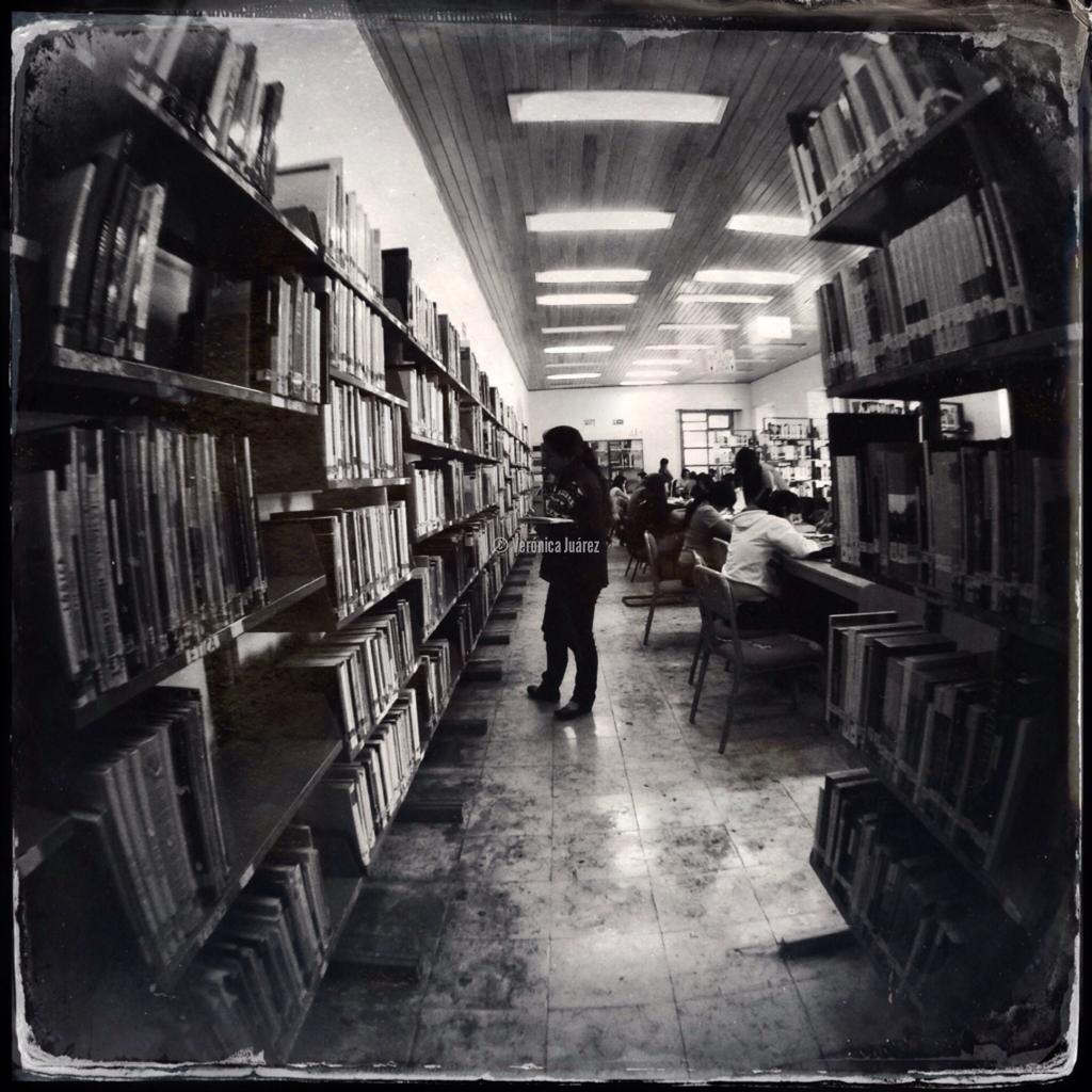 Celebremos el Día Internacional de la Biblioteca