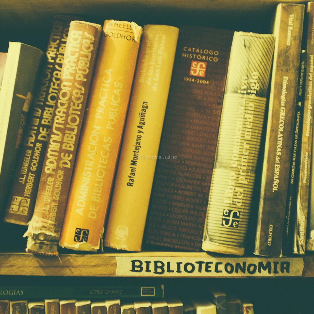 Día Nacional del Bibliotecario 2014