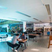 reapertura de las bibliotecas